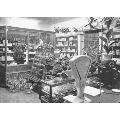 Innenraum der Bäckerei am Abend nach der Eröffnung am 4. August 1955